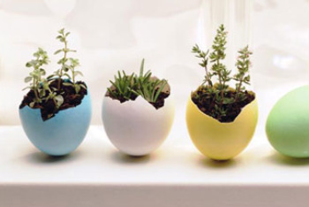 easter egg planters